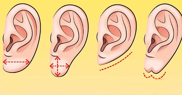 What Does Your Ear Shape Say About You?